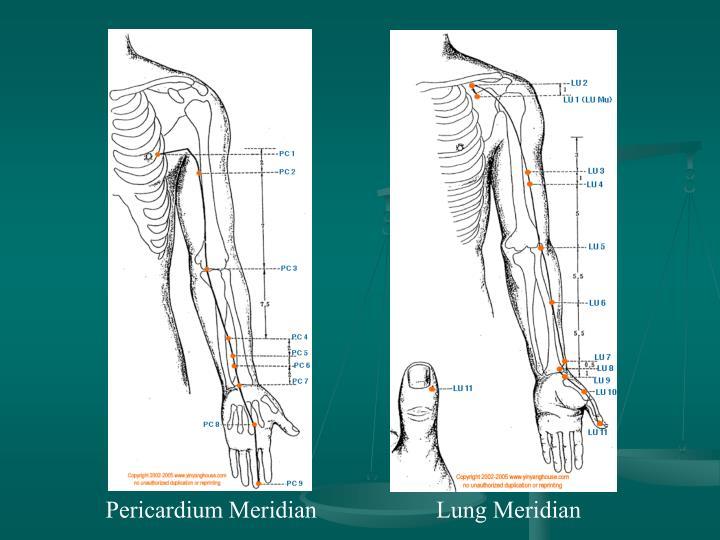 Pericardium Meridian
