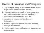 process of sensation and perception