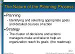 the nature of the planning process