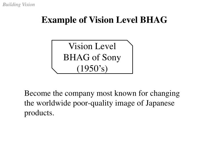 Example of Vision Level BHAG