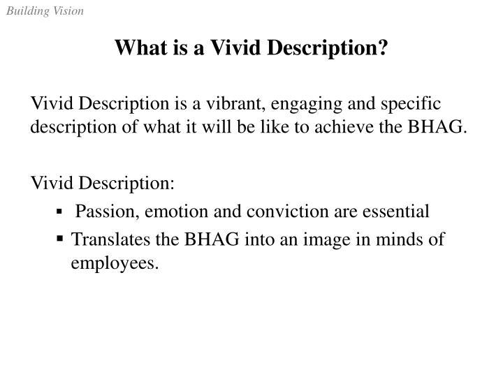 What is a Vivid Description?