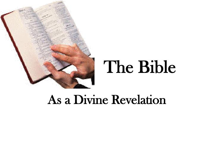 the bible n.