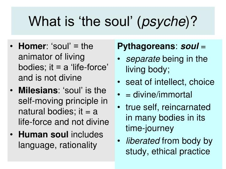What is 'the soul' (