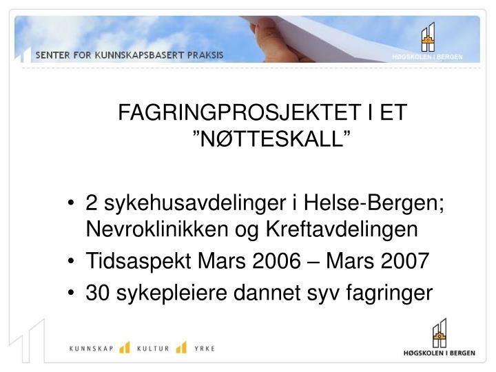 """FAGRINGPROSJEKTET I ET """"NØTTESKALL"""""""