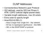 clnp addresses
