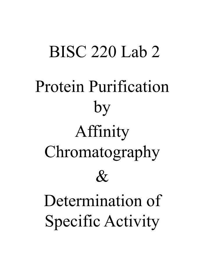 protein determination lab report Lab 3 urinalysis: biochemistry in medicine objectives 1 assay for glucose in urine 2 assay for protein in urine 3 perform a dipstick safety precautions.