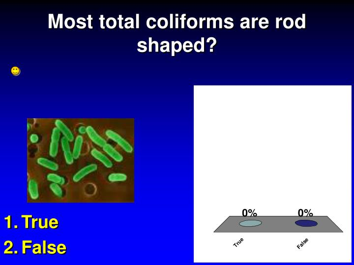 Most total coliforms are rod shaped?