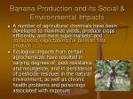 banana production and its social environmental impacts