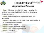 feasibility fund application process
