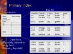 primary index