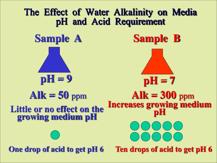 The  Effect  of  Water  Alkalinity  on  Media  pH  and  Acid  Requirement