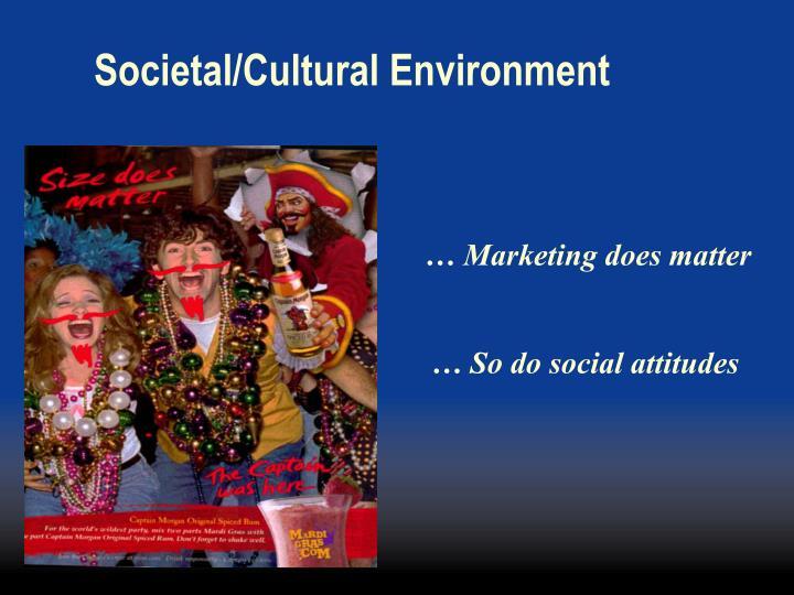 Societal/Cultural Environment