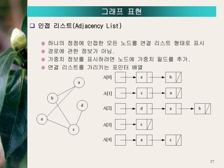 그래프 표현