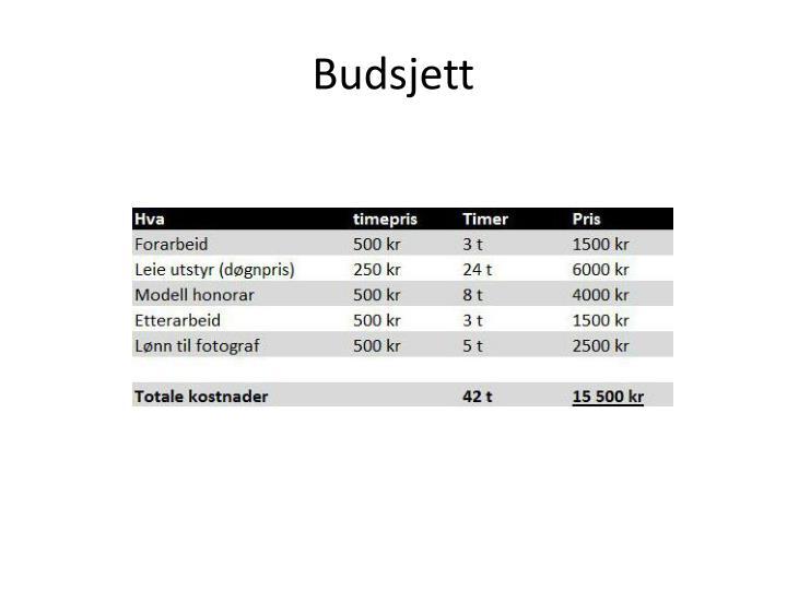 Budsjett
