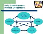 dairy cattle genetics industry cooperation