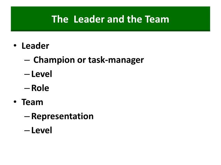 The  Leader and the Team