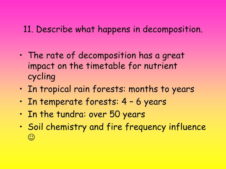 11. Describe what happens in decomposition.