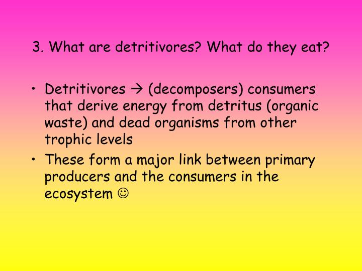 3. What are detritivores? What do they eat?