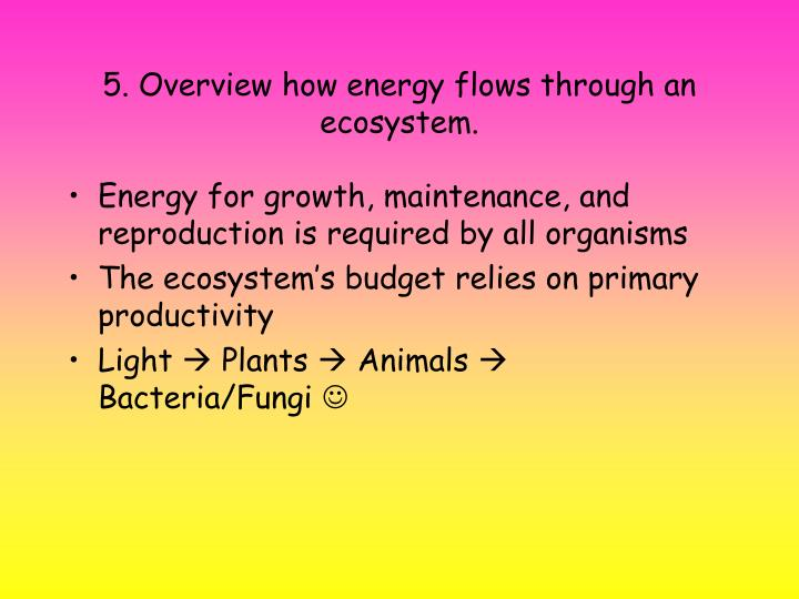 5. Overview how energy flows through an ecosystem.