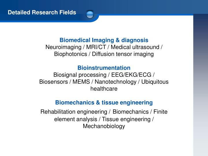 Detailed Research Fields