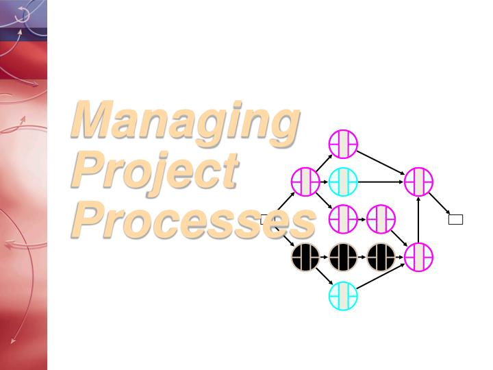 managing project processes n.