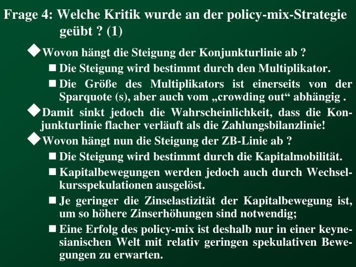 Frage 4: Welche Kritik wurde an der policy-mix-Strategie geübt ? (1)