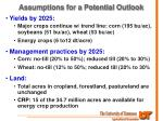 assumptions for a potential outlook