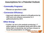 assumptions for a potential outlook1