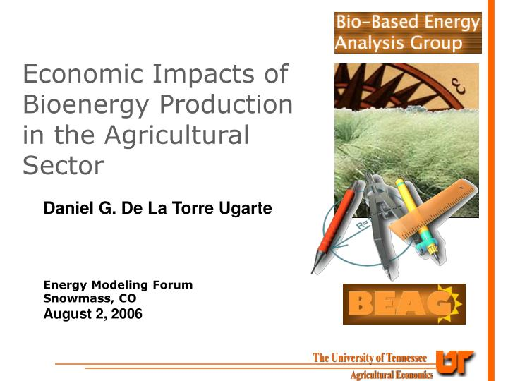 economic impacts of bioenergy production in the agricultural sector n.