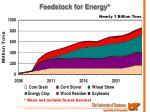 feedstock for energy