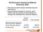net economic impacts to national economy 2025