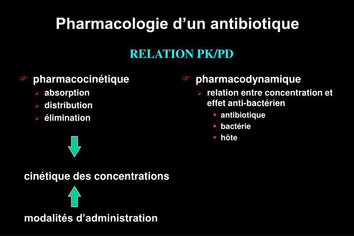 pharmacocinétique