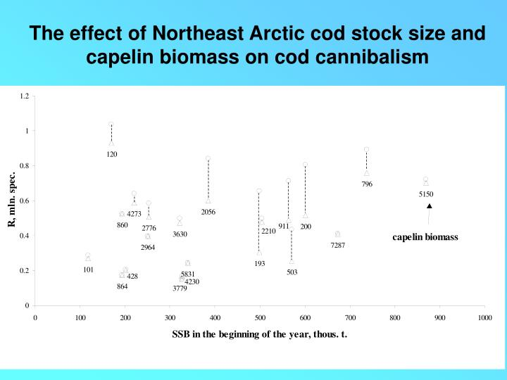 The effect of Northeast Arctic cod