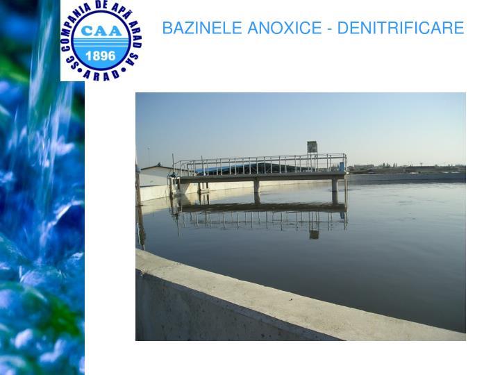 BAZINELE ANOXICE - DENITRIFICARE