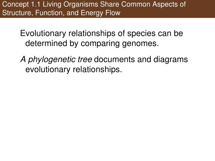 Concept 1.1 Living Organisms Share Common Aspects of Structure, Function, and Energy Flow