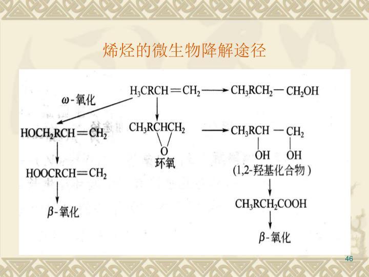 烯烃的微生物降解途径