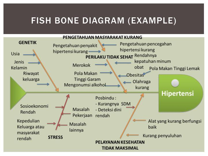 Ppt set up a program powerpoint presentation id3811877 fish bone diagram example ccuart Gallery
