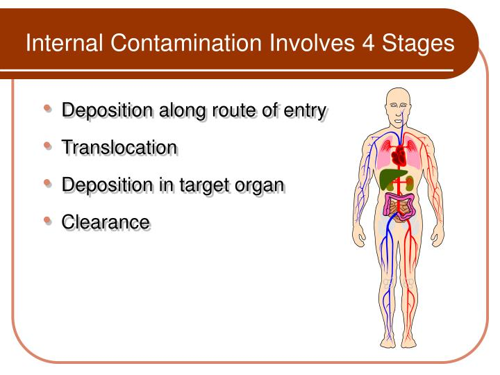 Internal Contamination Involves 4 Stages