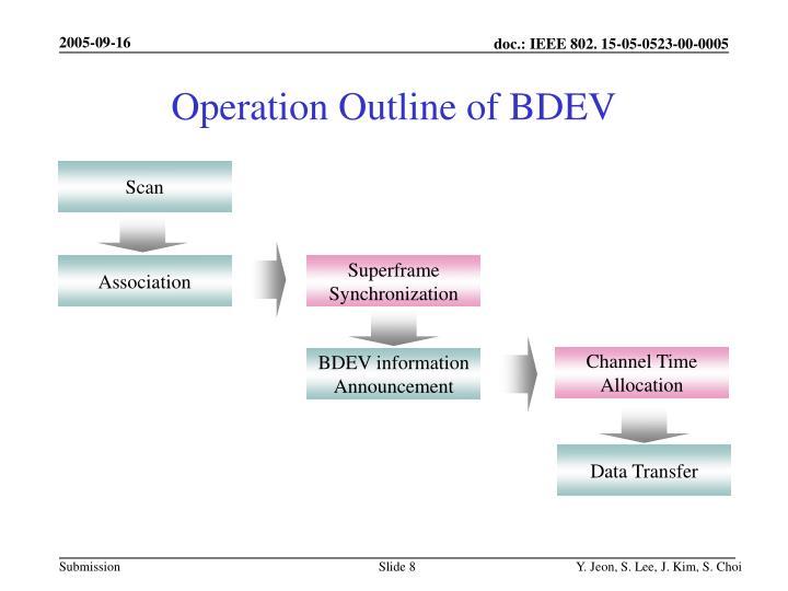 Operation Outline of BDEV