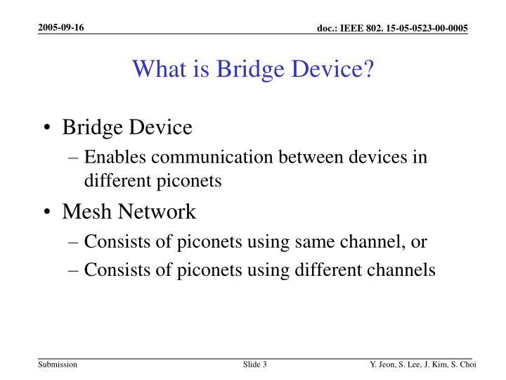 What is bridge device