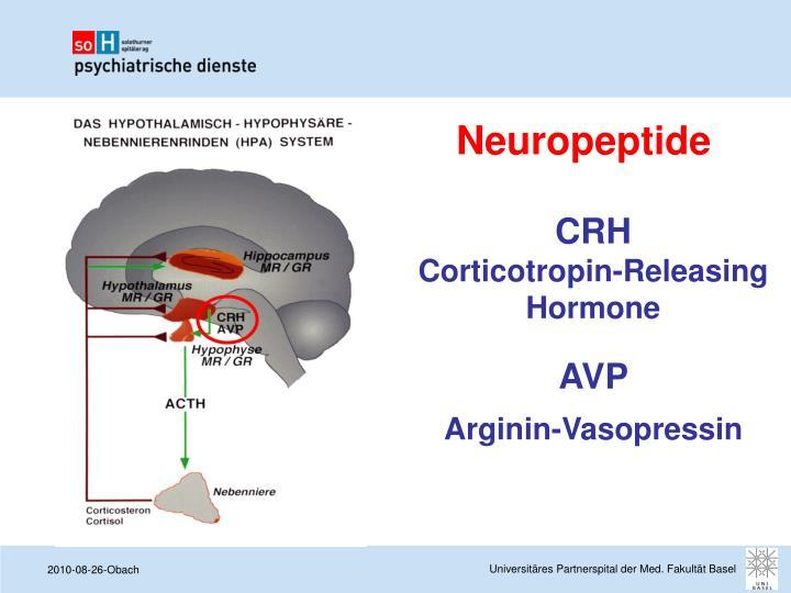 Neuropeptide