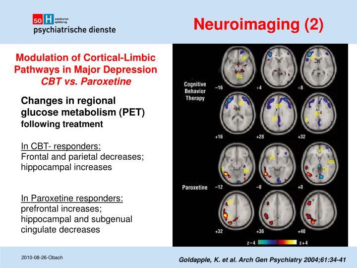 Neuroimaging (2)