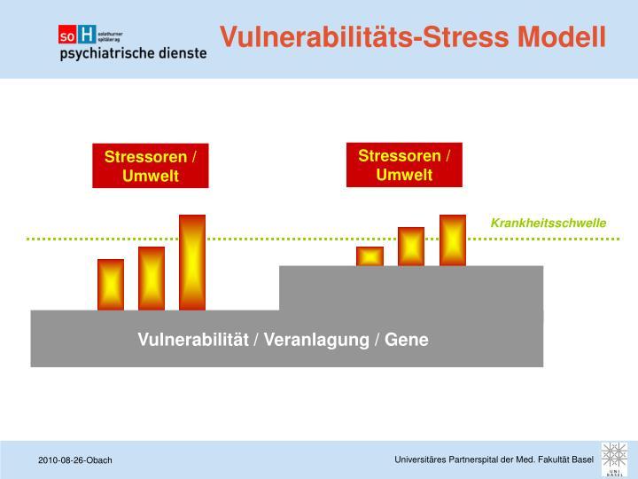Stressoren / Umwelt