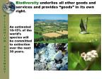 biodiversity underlies all other goods and services and provides goods in its own right