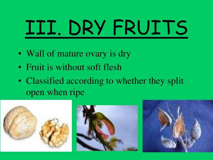 III. DRY FRUITS