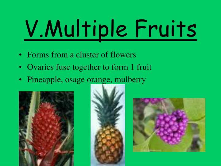 V.Multiple Fruits