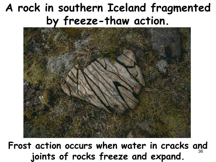 A rock in southern Iceland fragmented by freeze-thaw action.