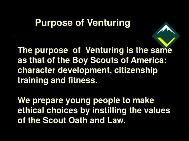Purpose of Venturing
