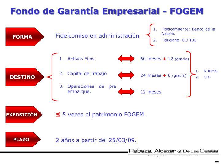 Fondo de Garantía Empresarial -