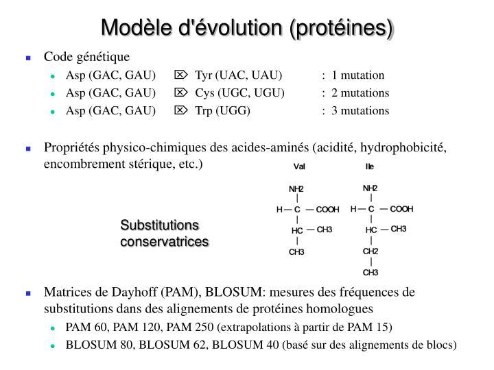 Modèle d'évolution (protéines)